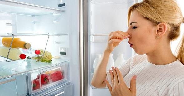 fridge smells of cheese
